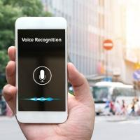 Veranderd voice search SEO?
