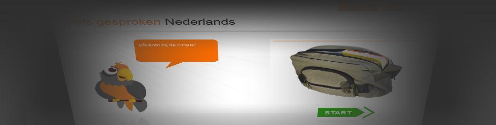 Project: Toetsgesprokennederlands.nl